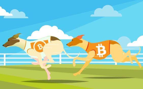 desenho de dois cachorros apostando corrida