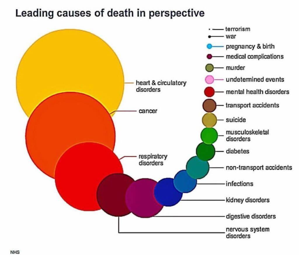 gráfico com estimativa de causas de morte no mundo