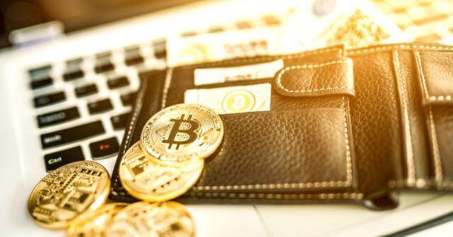 Bitcoin em uma carteira