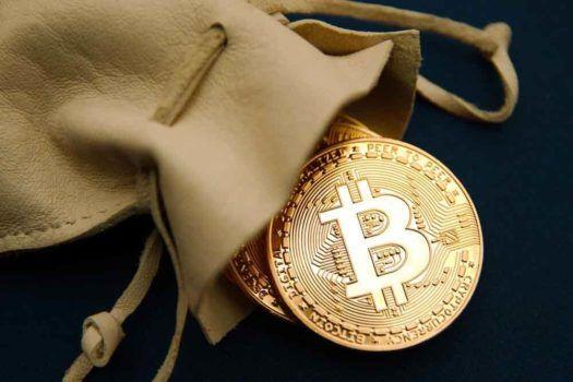 bolsa com moeda dourada de bitcoin