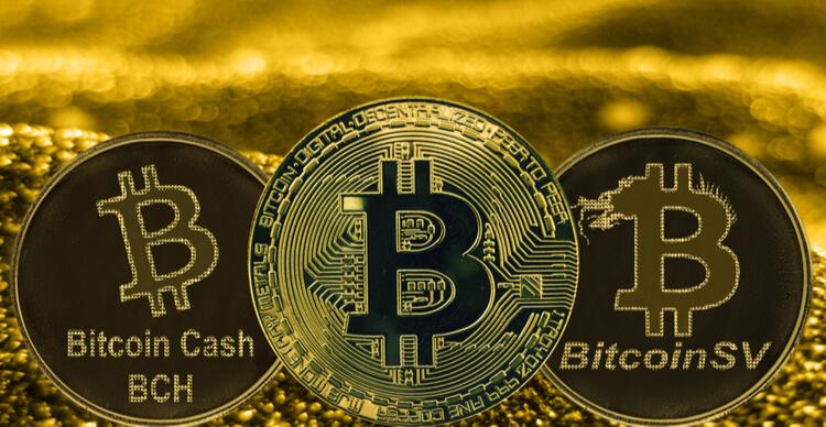 debe invertir en bitcoin o bitcoin cash lista de corredores de opciones binarias reguladas